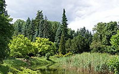 14-Arboretum