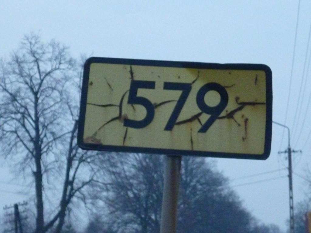 droga wojewódzka 579 Błonie-Leszno