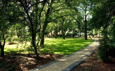 coraz więcej zieleni i terenów rekreacyjnych w Ożarowie