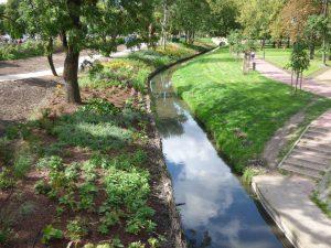 Park Włoski Błonie (8)