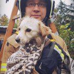 Bohaterska akcja strażaków z Łomianek. Uratowali uwięzionego kundelka