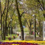 Duża dotacja na zagospodarowanie zieleni w Piastowie