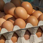 Na targu (niektórych) jajek i drobiu nie kupisz – tak Żyrardów walczy z ptasią grypą