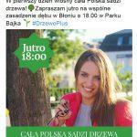 Schetyna, Kidawa-Błońska, Gajewska-Płochocka w Błoniu. Razem zasadzili drzewo [WIDEO]