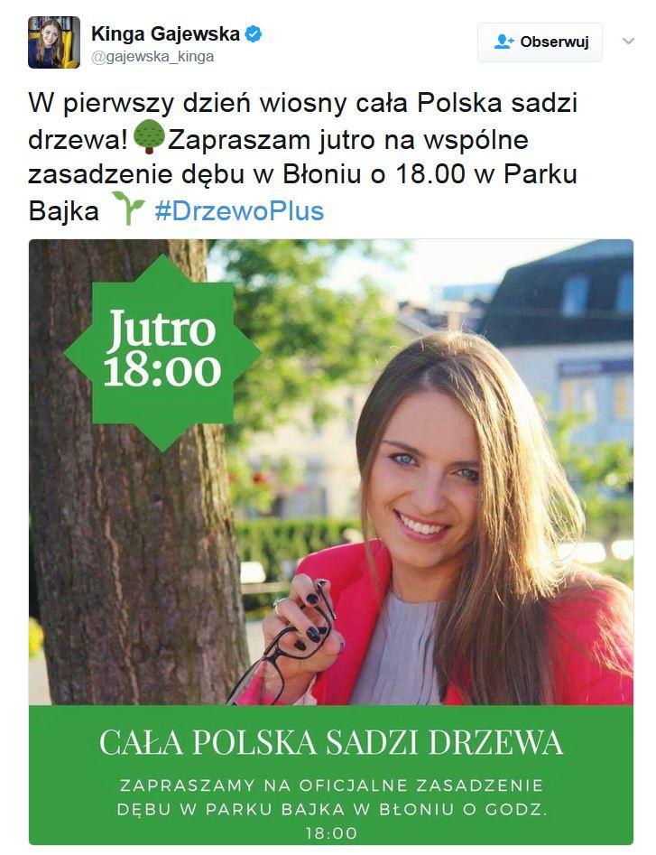 drzewo-blonie-platforma-obywatelska
