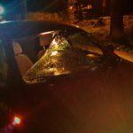 Tragiczna śmierć na drodze w Rokitnie. Zginął 40-letni mężczyzna