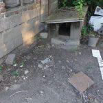 Makabryczne odkrycie w gminie Brwinów: psa jadły żywcem larwy much. Zagłodzone zwierzę dogorywało przez tydzień [UWAGA! DRASTYCZNE ZDJĘCIA, WIDEO]