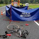 Policja poszukuje świadków wypadku w Łubcu