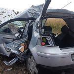 Golf uderzył w drzewo, cztery osoby trafiły do szpitala [FOTO]
