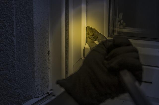 kradzieze-mszczonow