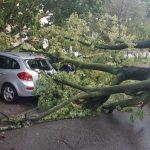 Trzy dni burz w Żyrardowie i okolicach. Strażacy wciąż pracują [FOTO]
