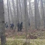 Makabryczna zbrodnia: zabił mężczyznę, poćwiartował zwłoki i rozrzucił w Puszczy Kampinoskiej
