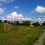 Siłownia, ścianka wspinaczkowa, ścieżki rowerowe i mnóstwo zieleni. Nowe oblicze Eko Parku w Żyrardowie