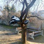 """Skuter """"zaparkowali"""" …na drzewie"""