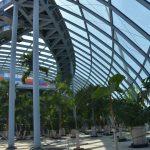 18 basenów, 32 zjeżdżalnie, 740 egzotycznych palm. Park of Poland już zadaszony! Otwarcie za kilka tygodni [FOTO]